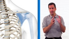 Global Dynamic Functional Stability for the Hip & Pelvis